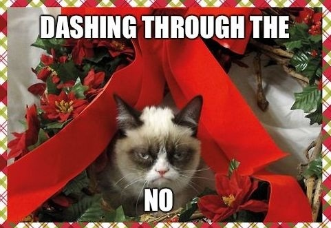 How I perceive my boyfriend after he just told me he doesn't want to put up Christmas decorations this year.