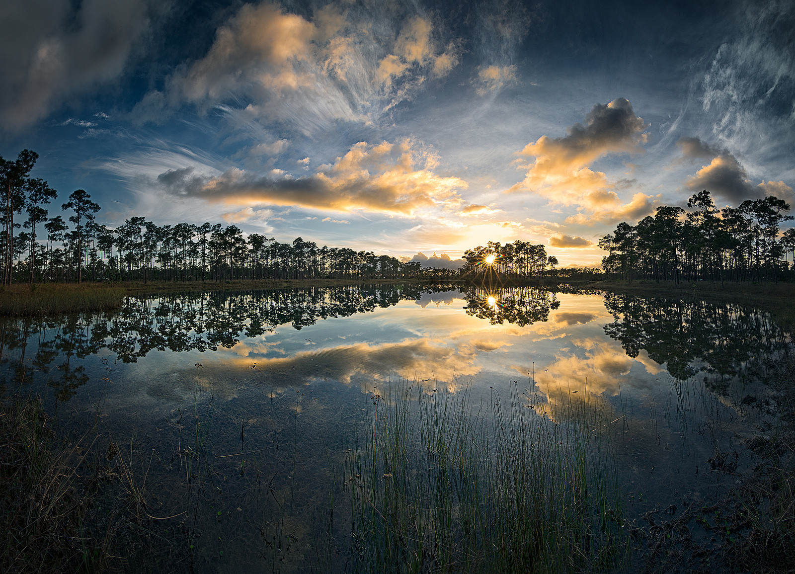 Amazing Sunset in the Florida Everglades