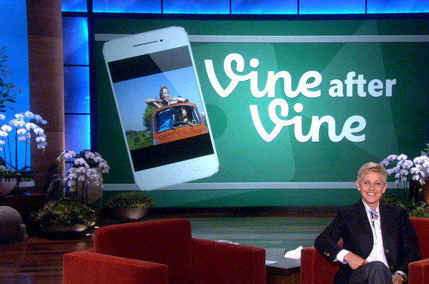 Do It For The Vine (and Build A Successful Career?)