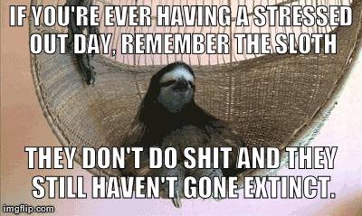 Remember the Sloth