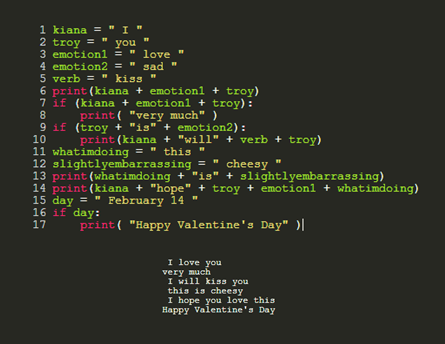 Dating a programmer and this is what I made him for Valentine's Day. I googled the basics of Python, how'd I do?