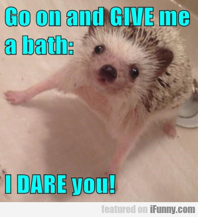Go On And Give Me A Bath - I Dare You