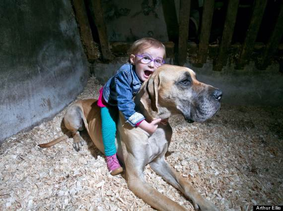 You Won't Believe What This Guard Dog Is Protecting A Little Girl From. Wow.