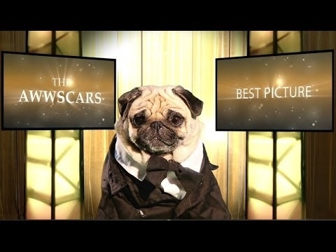 The Oscars 2014 - Best Picture Nominees [Pug Version]