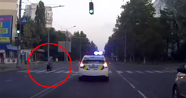 A Policeman Was Cruising Down A Road When He Stopped To Do Something Incredible
