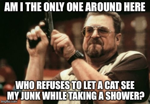 On people taking cat pics while scrubbing down...