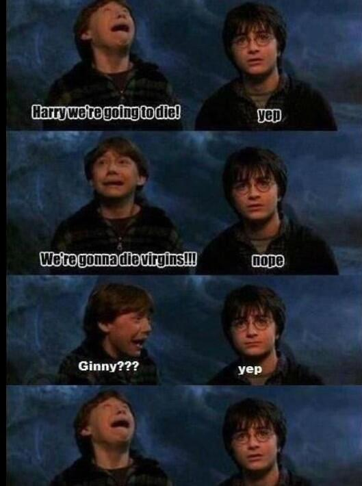 Damnit Harry!