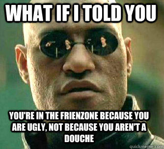 what if i told you you're in the frienzone because you are ugly, not because you aren't a douche