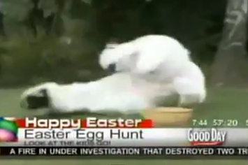 Community Post: News Reporter Ruins Easter