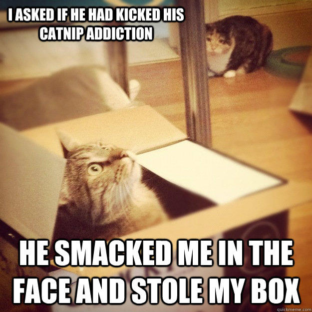 I asked if he had kicked his catnip addiction he smacked me in the face and stole my box
