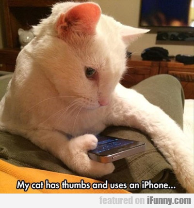 My Cat Has Thumbs And Uses An Iphone...